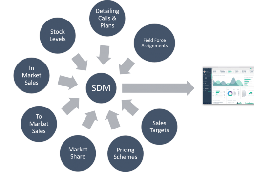 SDM Infographic